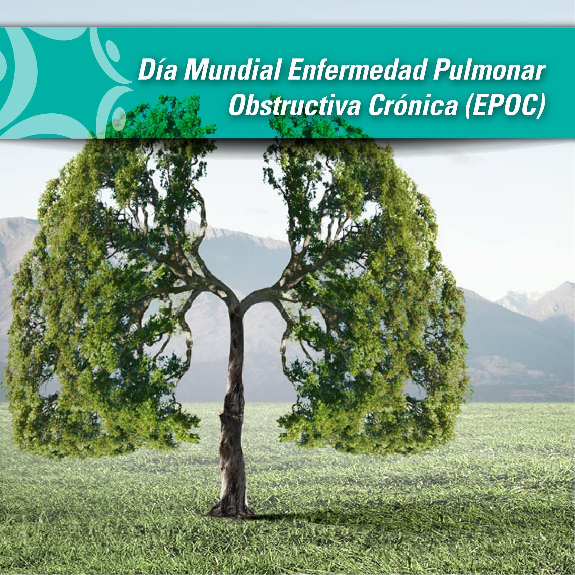Dia mundial EPOC