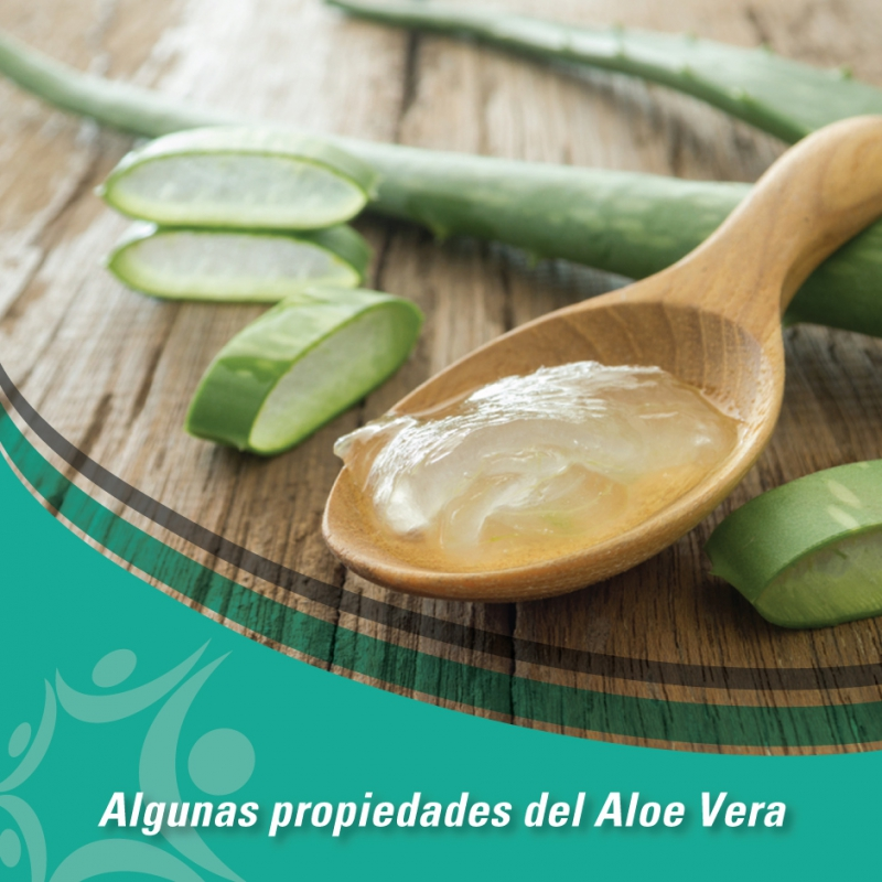 placas_nov-aloe